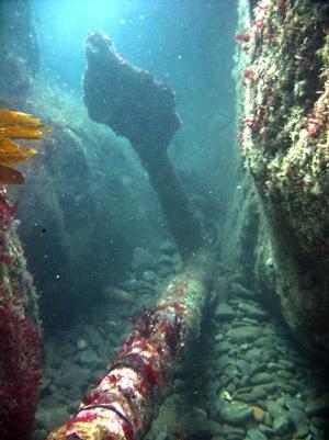 Mewstone Anchor